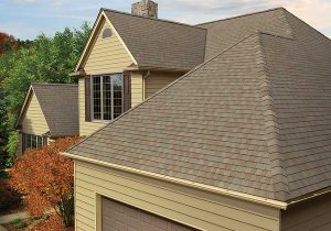 Roofing Maintenance Service